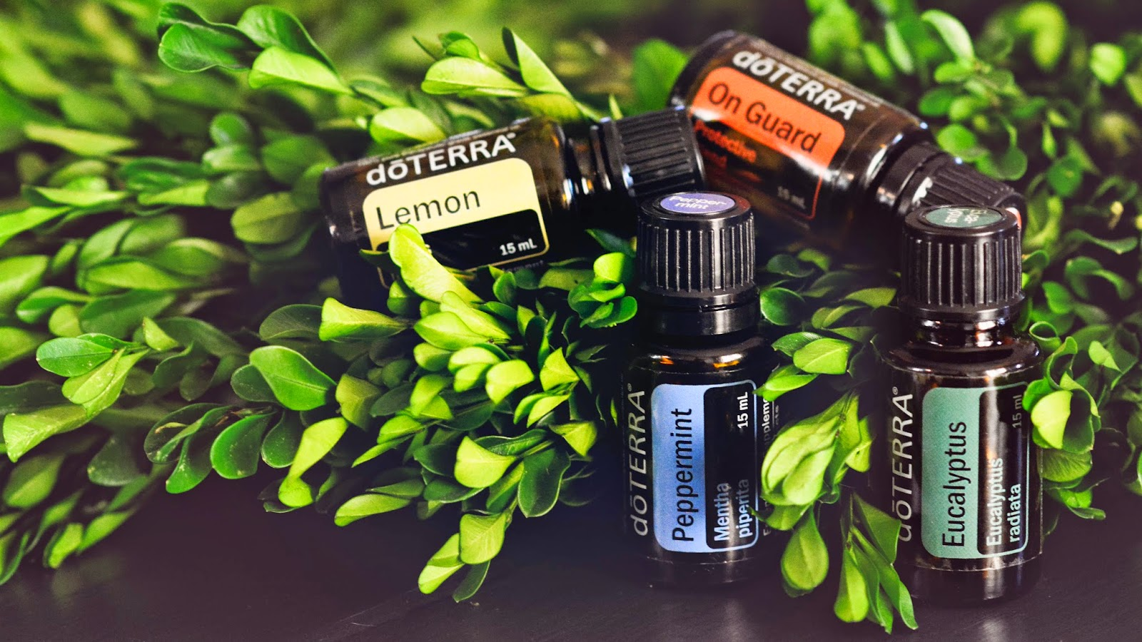 Pop-Up Shop: doTERRA Pure Therapeutic Grade Essential Oils